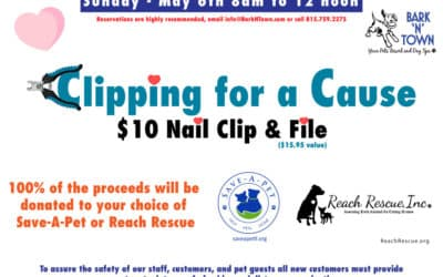 Clipping for a Cause 2018