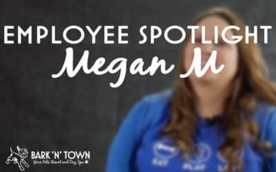 Employee Spotlight Megan M