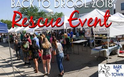Back to Drool 2018 Rescue Event