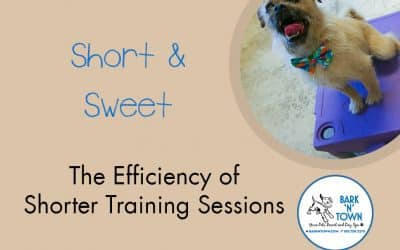 Short & Sweet:  The Efficiency of Shorter Training Sessions