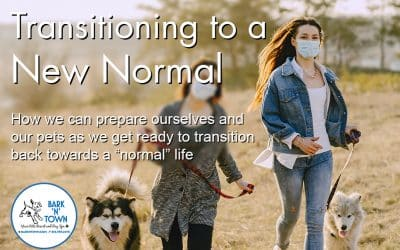 Transitioning to a New Normal